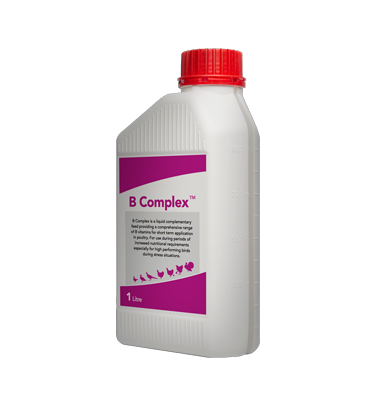 Rosehill Poultry | Products | B Complex